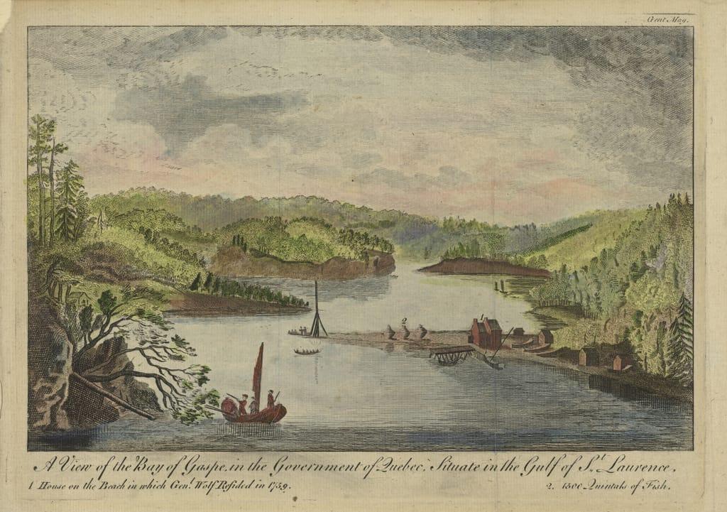 Vue de la baie de Gaspé, dans le gouvernement de Québec, située dans le golfe du Saint-Laurent, extrait du Gentleman's Magazine