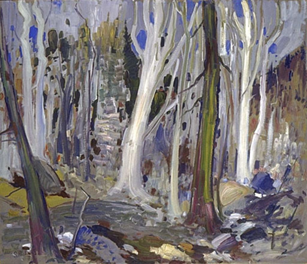 Scène de forêt