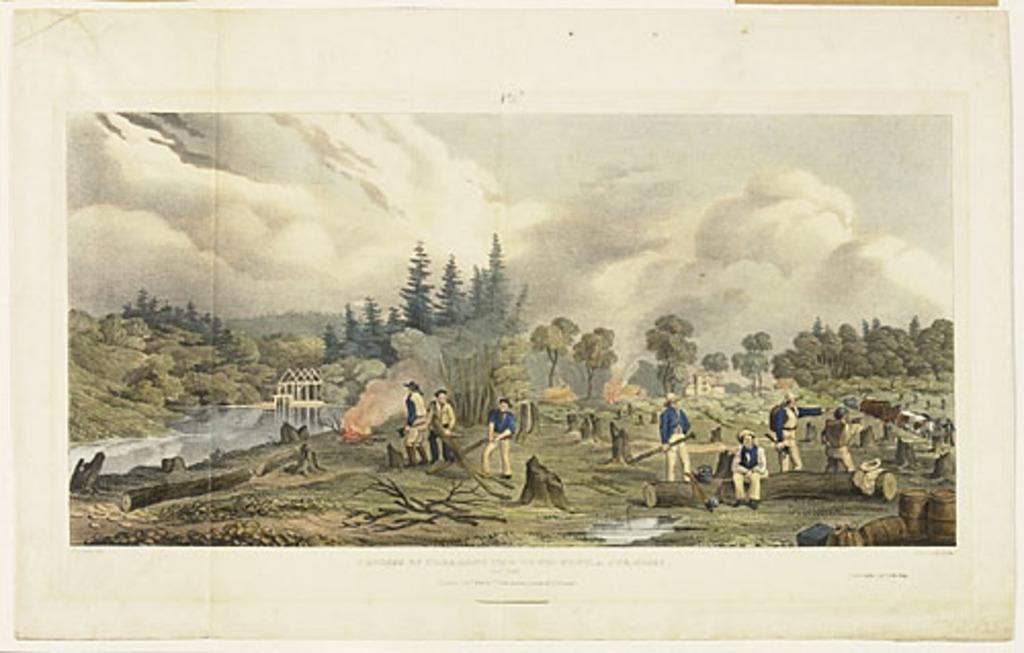 Défrichage du lot de ville à Stanley, oct. 1834, Nouveau-Brunswick