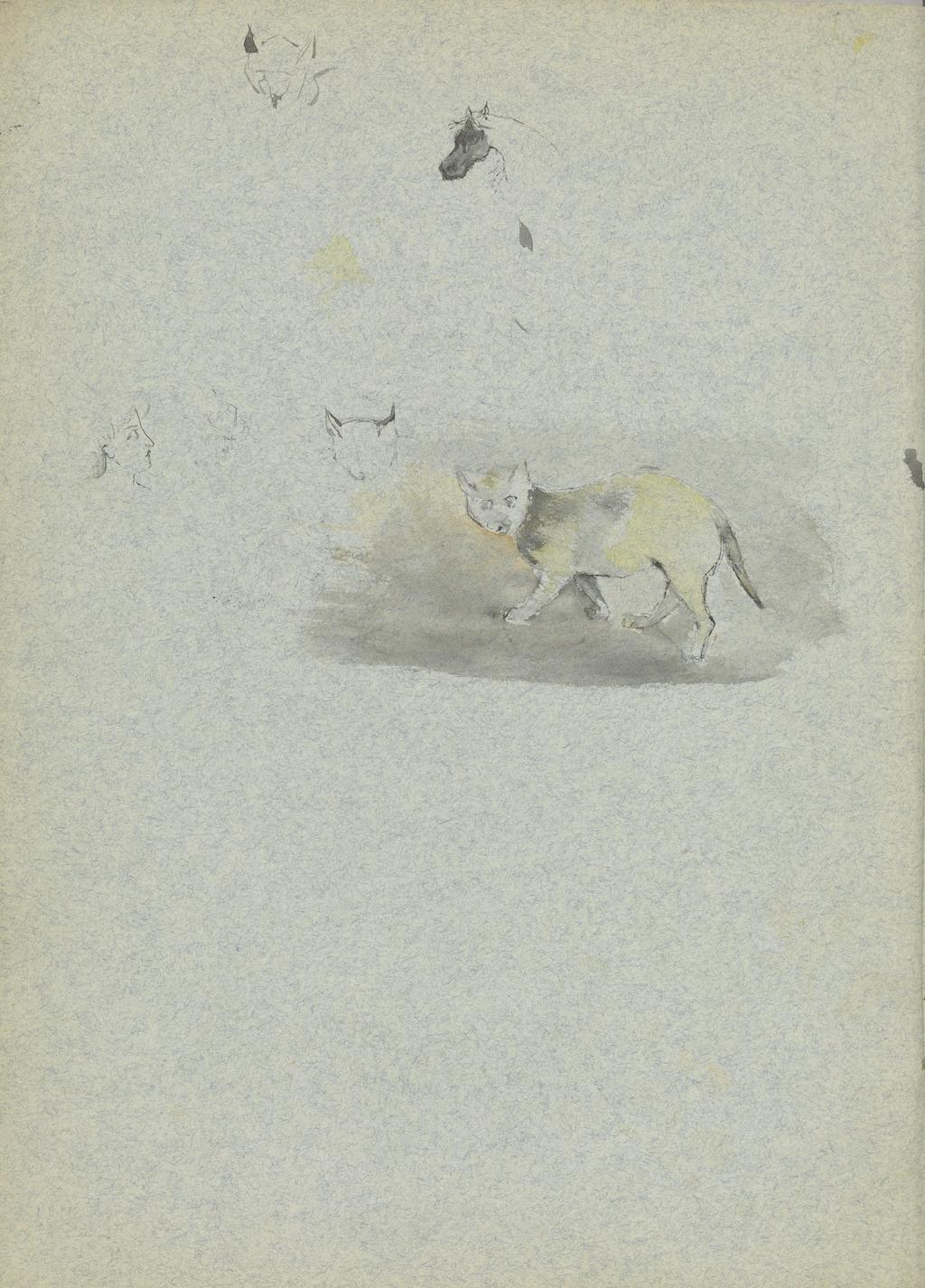 Cahier de dessin, un chat