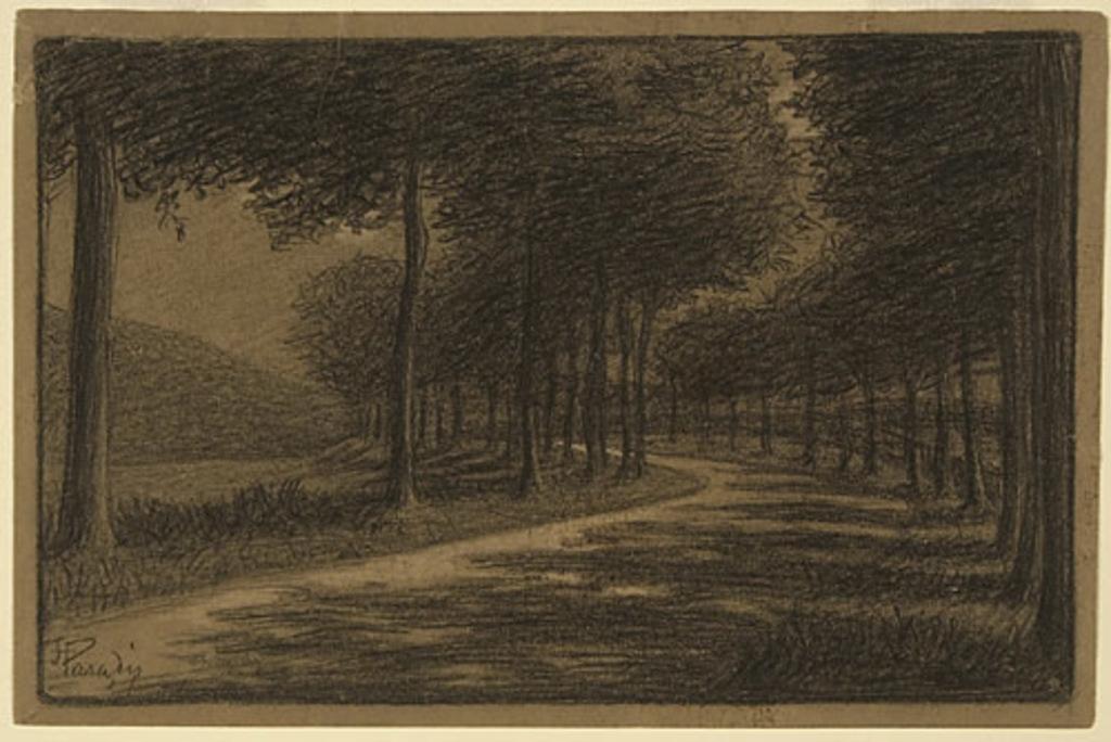 Route sous les arbres