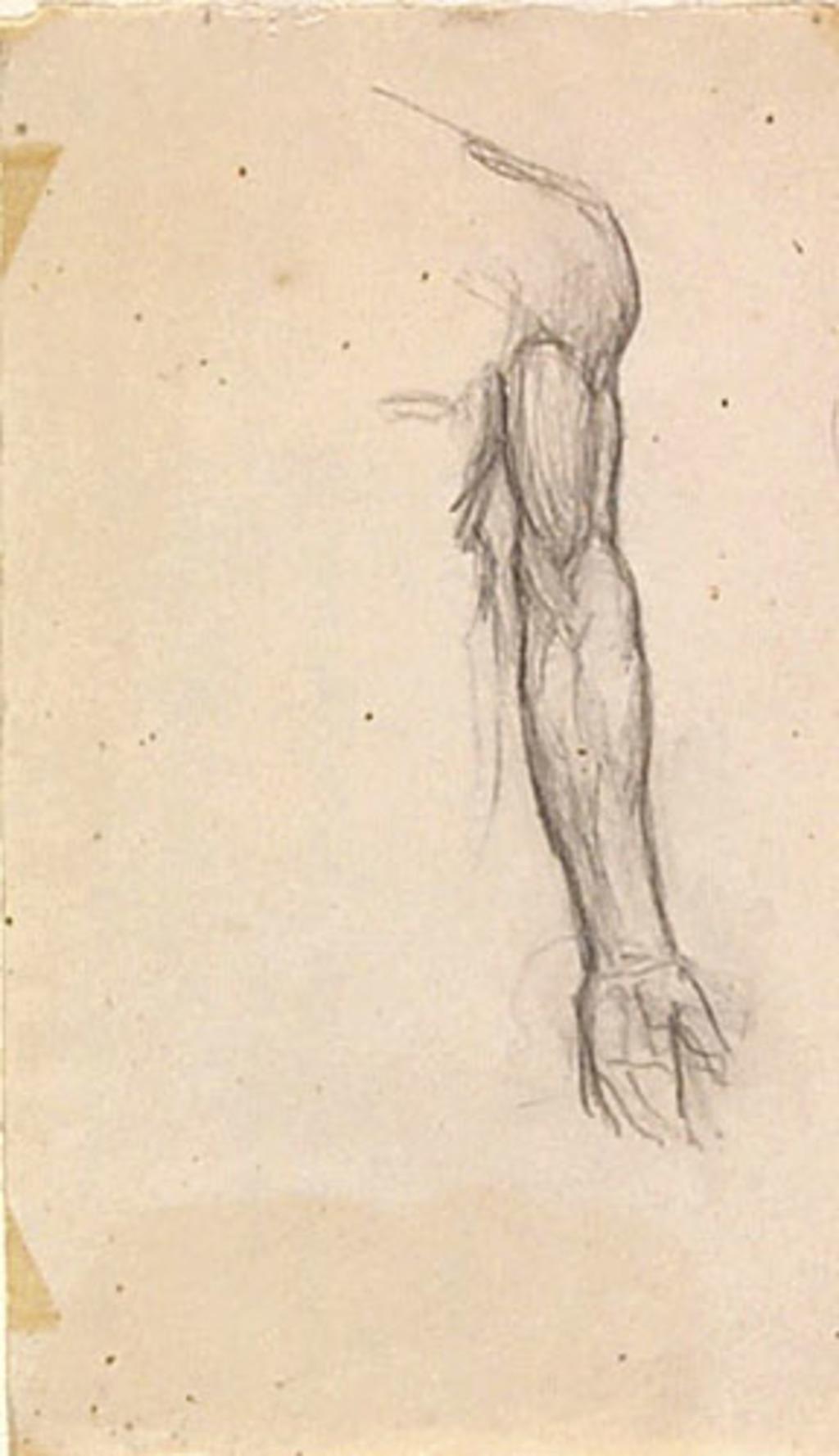 Étude anatomique d'un bras gauche pour « La Sainte Trinité ». Étude pour la décoration de l'église de Shawinigan-Sud