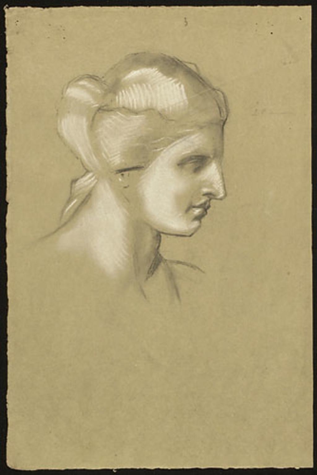 Tête de Vénus, étude d'après le plâtre