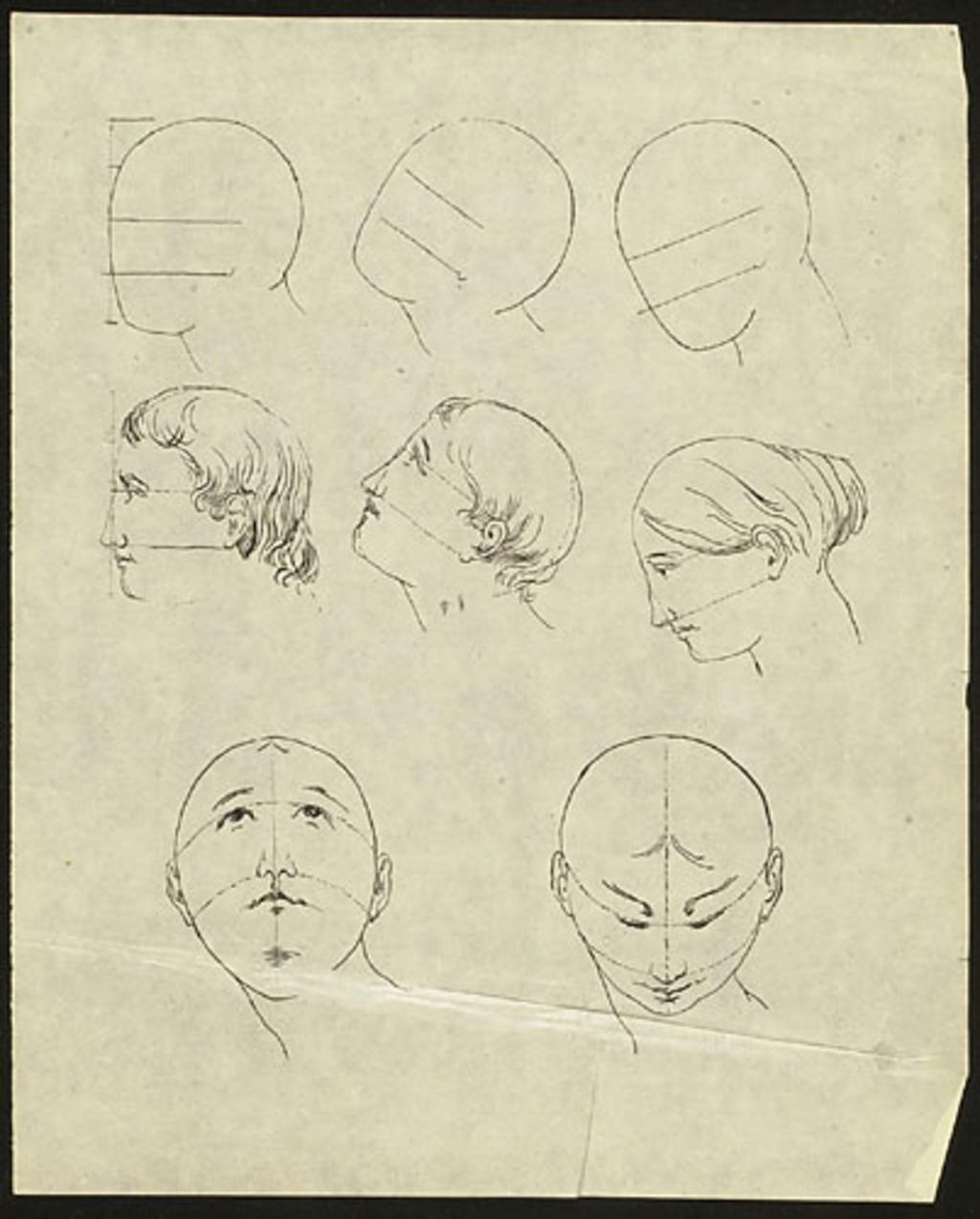 Études des proportions de la tête