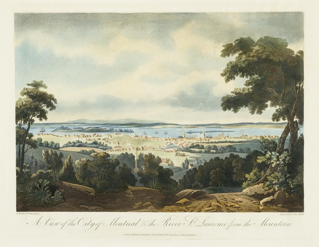 La Ville de Montréal et le fleuve Saint-Laurent vus de la montagne