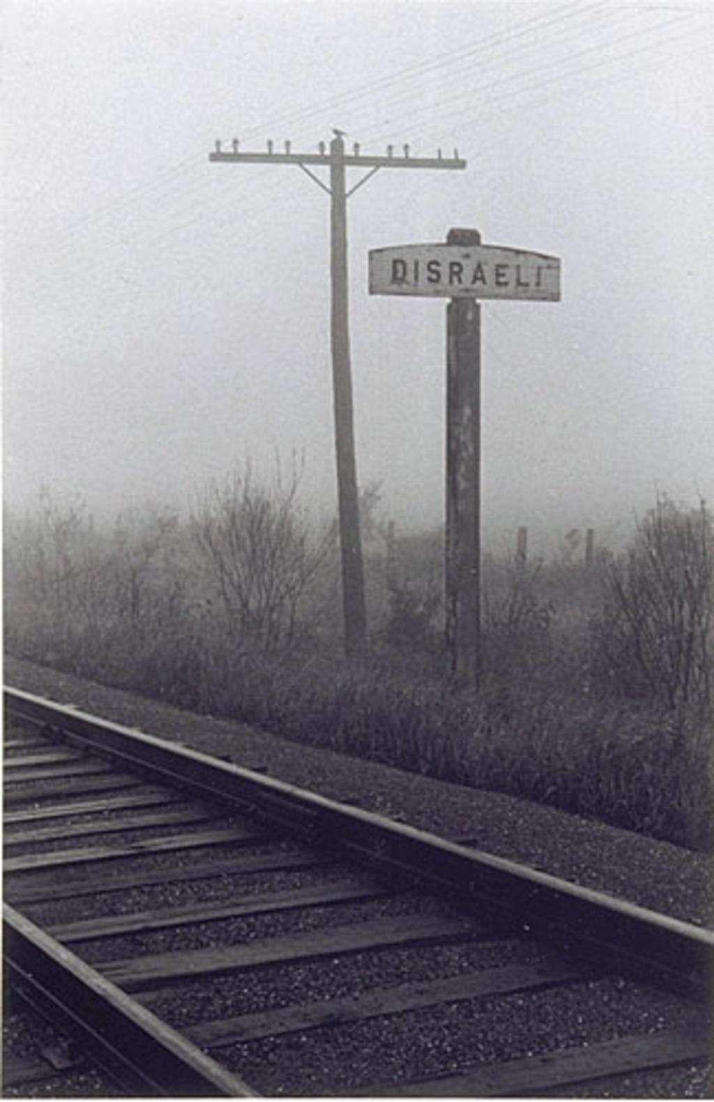 Route 1 qui mène à Disraeli, de la série « Disraeli, une expérience humaine en photographie »