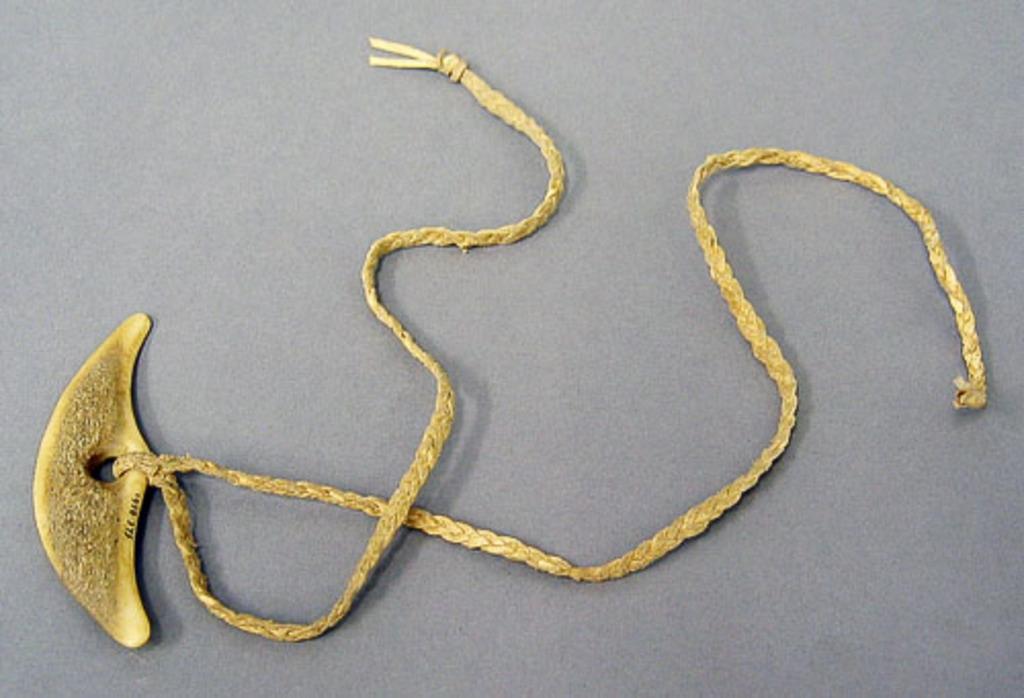Attache en ivoire et lanière s'accrochant au harnais des chiens