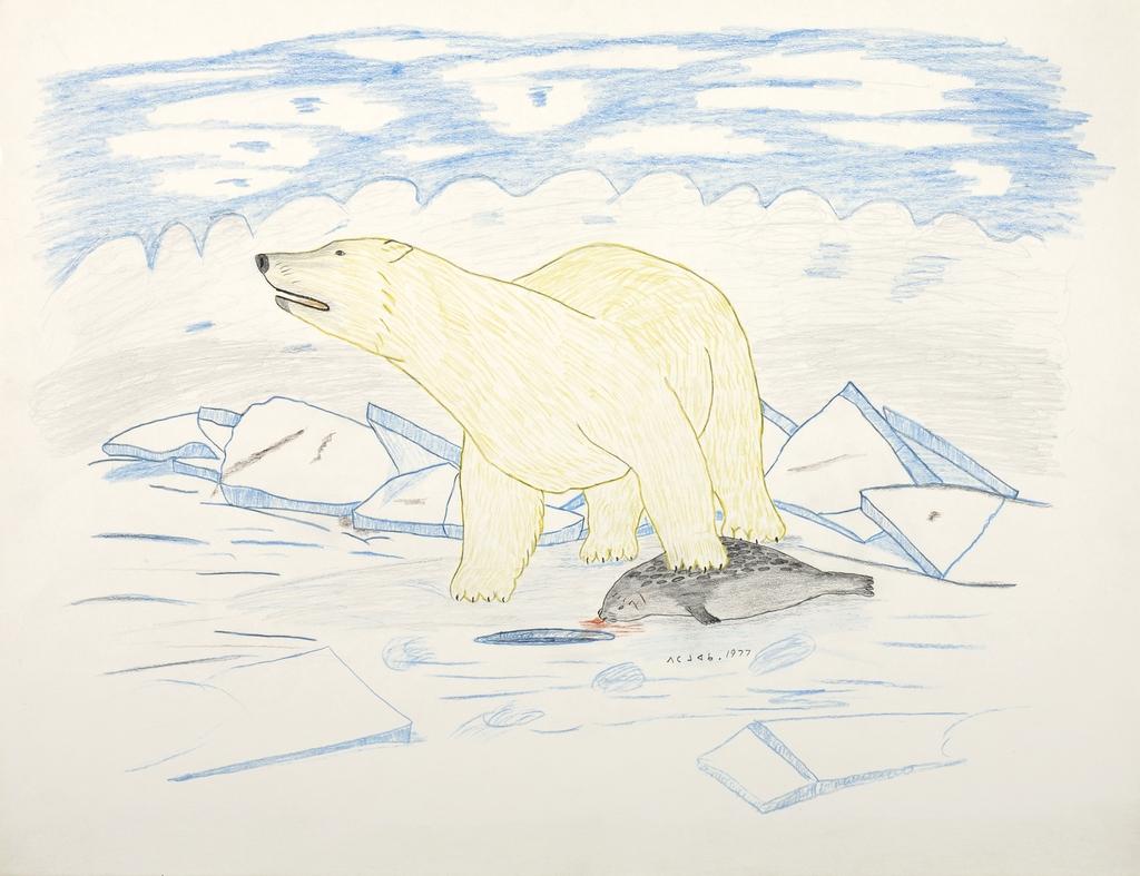 Ours blanc capturant un phoque sur la banquise