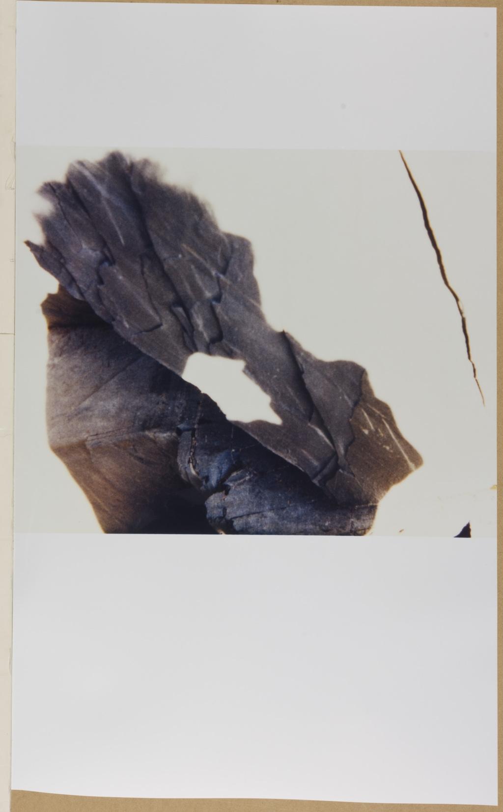 Autoportrait et autres ruines