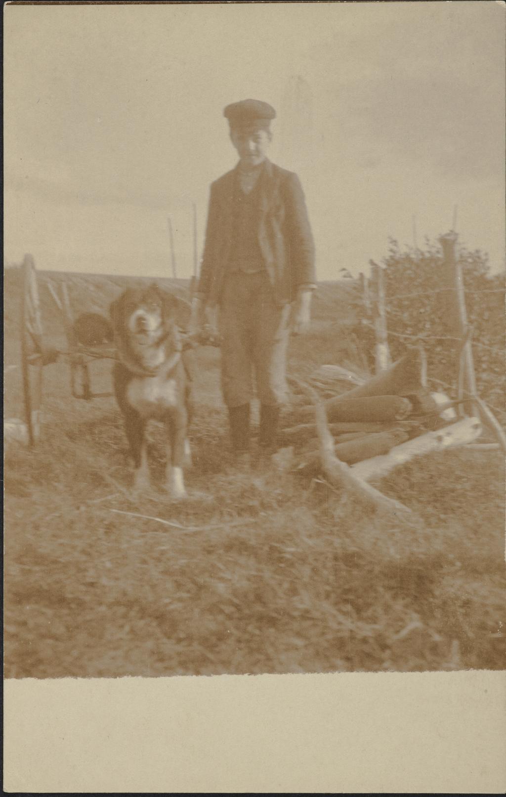 Jeune Garçon et son chien attelé
