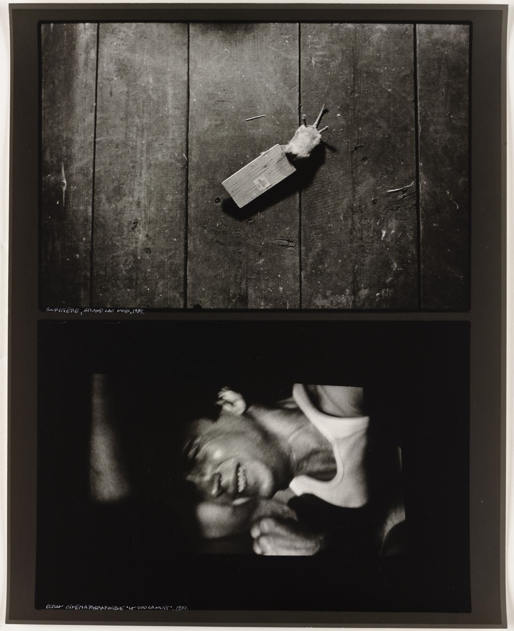Souricière,1985 (haut); Écran cinématographique : Jean-Claude Lauzon, « Un zoo la nuit », 1987 (bas), de la série Les Tremblements du coeur, troisième séquence 6/8